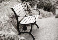 长凳孤立公园 库存图片