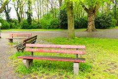 长凳宽敞的自然公园 免版税库存图片