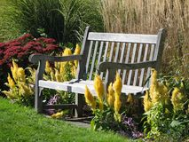 长凳庭院 免版税库存照片