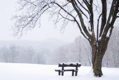 长凳报道了冻结的横向雪冬天 免版税库存照片