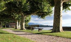 长凳日落结构树 库存图片