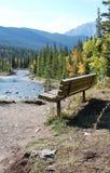 长凳有河谷视图 免版税库存照片