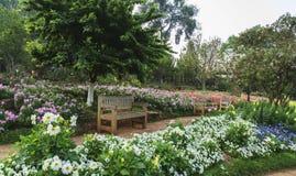 长凳木头在花园里 免版税库存照片