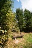 长凳森林 库存图片