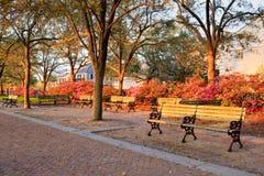 长凳海滨公园查尔斯顿南卡罗来纳 库存照片