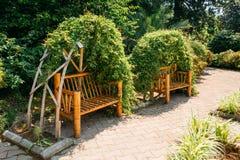 长凳由竹子制成在有醉汉的Vegetion一个美丽的夏天公园变化了 免版税库存照片