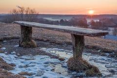 长凳由自然木板条做成 免版税库存图片