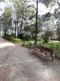长凳的垂直的射击和在宜人的撤退的Parque del丽池公园的一条路 免版税库存照片