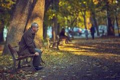 长凳的孤独的退休的人 免版税库存照片