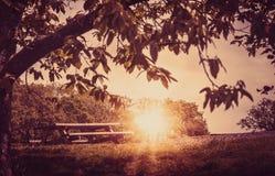 长凳空的日落 图库摄影