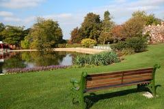 长凳空的湖俯视的公园 免版税库存照片