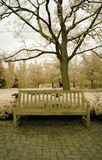 长凳红外线公园 库存图片