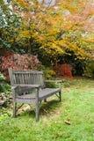 长凳结构树黄色 免版税库存图片