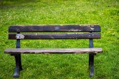 长凳老木 图库摄影