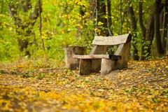 长凳老木 库存图片