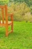 长凳草结构树 库存图片