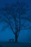 长凳蓝色 库存图片