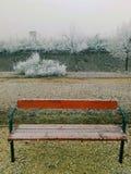 长凳薄雾 库存照片