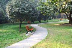 长凳路径夏天 免版税库存照片