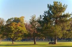 长凳路线高尔夫球绿化木头 免版税库存照片