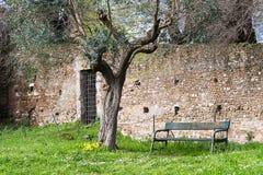 长凳邀请您在罗马广场,罗马,意大利, EU排队 免版税库存图片