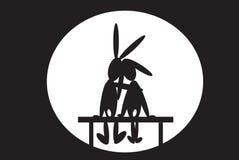 长凳野兔 库存照片