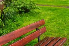 长凳雨公园 免版税库存照片