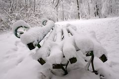 长凳雪 库存图片