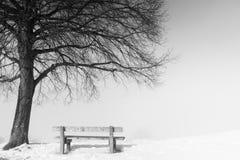 长凳,有雾的冬日110 免版税库存图片