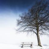 长凳,有雾的冬日143 免版税库存图片