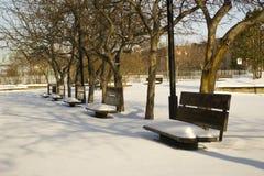 长凳incity公园雪未触动过的冬天 库存图片