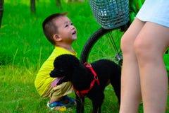 长卷毛狗儿童美丽的女孩 库存图片