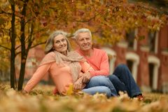 年长夫妇在公园 免版税库存图片