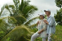年长夫妇在热带庭院里 免版税库存图片