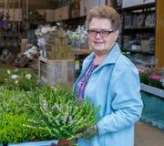 年长妇女买的石南花在庭院商店 免版税库存照片