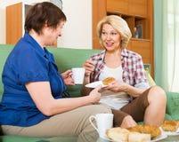 年长妇女在桌上用茶 免版税图库摄影