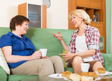 年长妇女在桌上用茶 库存图片