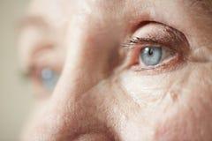 年长妇女的哀伤的眼睛 免版税库存照片
