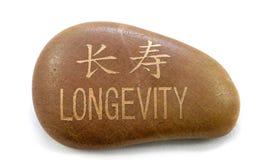 长寿石头 库存照片