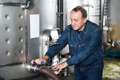 年长工作者检查在酿酒厂的设备 库存图片