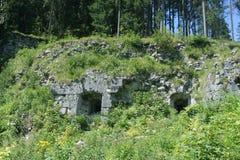 长得太大的城堡废墟 图库摄影