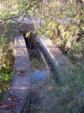 长得太大的小水道在安大路西亚 免版税库存照片