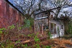 长得太大的木头被构筑的被放弃的加油站安徒生得克萨斯 免版税库存图片
