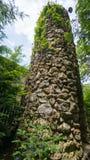 长得太大的被破坏的塔 免版税图库摄影