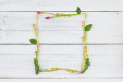 长方形发芽的花框架 库存图片