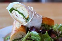 长方形宝石三明治与菜的麝香草咖啡馆圣莫尼卡在pla 图库摄影