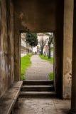 长方形开头历史的墙壁在罗马,意大利 免版税库存照片