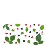 长方形构成莓果和叶子 免版税库存图片