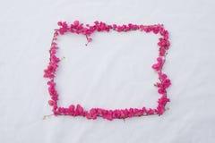 长方形桃红色花框架 图库摄影