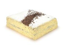 长方形自创蛋糕用在白色背景和椰子隔绝的巧克力 免版税库存图片